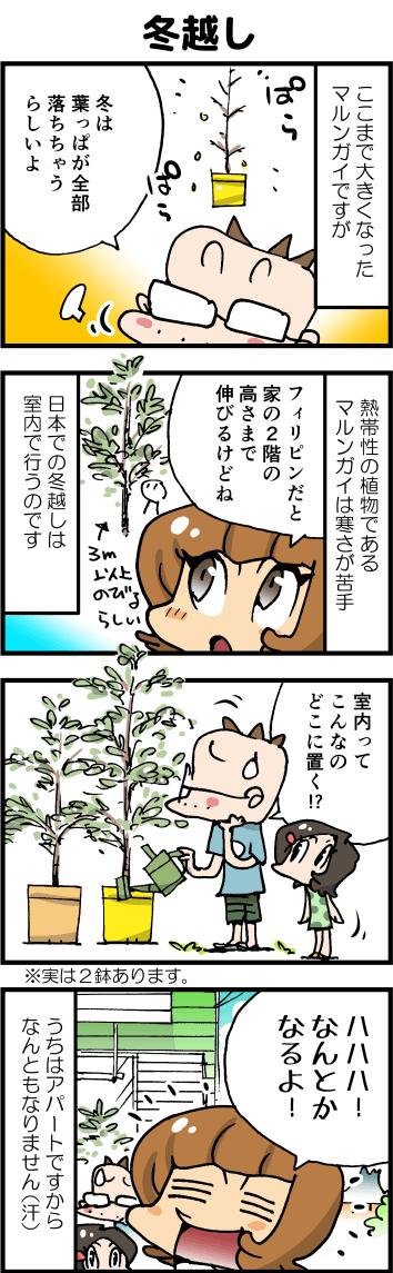 05冬越し