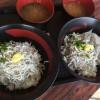 食べてきたよ!田子の浦港漁協食堂のしらす丼!