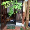 さすが日本育ち…礼儀正しい我が家のマルンガイ
